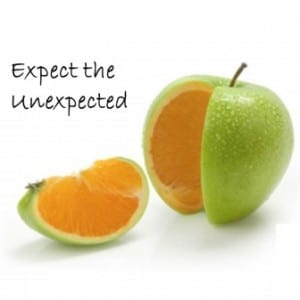 2013.08 - Newsletter - Expect unexpected